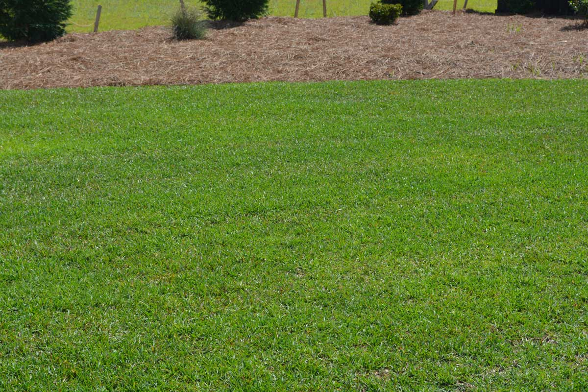 Lawn Care Services - H & H Landscaping & Lawn Care